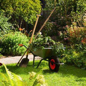 garden-Maintain